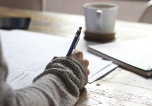 Emerging Social Entrepreneurs' Curriculum